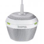 Biamp Devio DСM-1